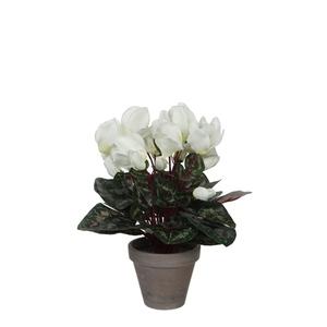 Cyclamen blanc plante artificielle en pot gris H 30 x Ø 30 cm 234151