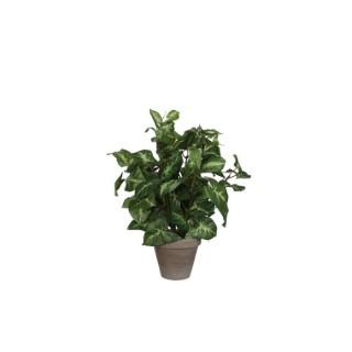 Fittonia vert plante artificielle en pot gris H 35 x Ø 25 cm 234201