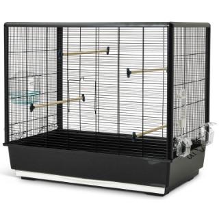 Cage primo 60 knock down noire 80x50xH70 cm 234306