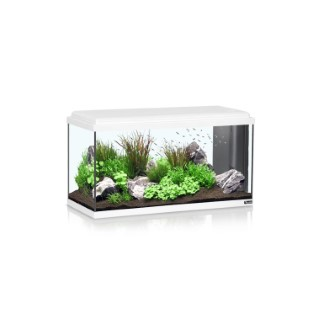 Aquarium Advance 80 96L LED Blanc 40x80x30 cm 246046