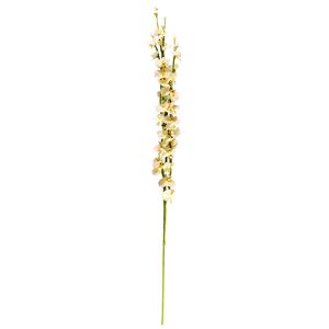Brindille orchidee blanche 246659