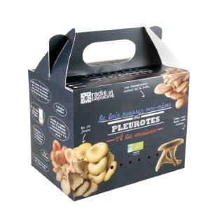 Kit de culture pour champignons pleurotes grises bio 25x20x15 cm 258056