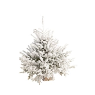 Sapin naturel Diamant Robin® blanc effet enneigé 40/60 cm 258151