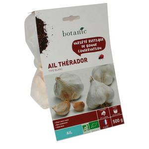 Bulbes d'ail blanc Therador AB bio 55+ 258427