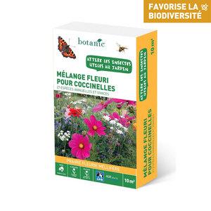 Mélange fleuri pour coccinelles 260130
