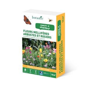 Fleurs mellifères arbustes et rosiers 260136