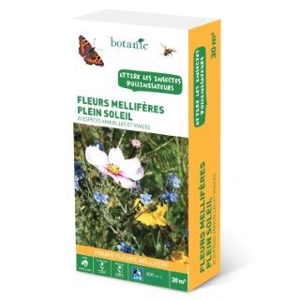 Fleurs mellifères plein soleil 260152
