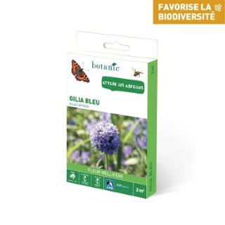 Gilia bleu 260154