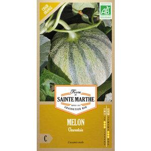 Melon Charentais 260657