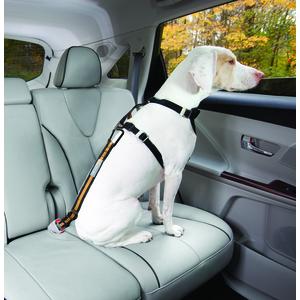 Laisse pour chien direct to seatbelt 261010