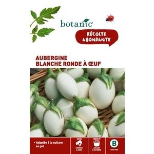 Aubergine Blanche Ronde à Œuf Caillard x2 sachets 261121