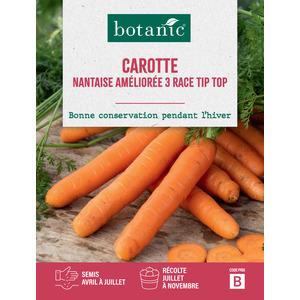 Carotte Nantaise Améliorée 3 Race Tip Top Caillard 261134