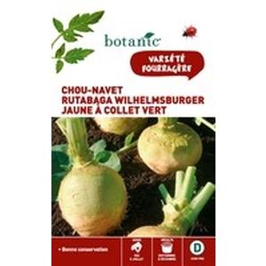 Chou-Navet Rutabaga Wilhelmsburger Caillard 261154