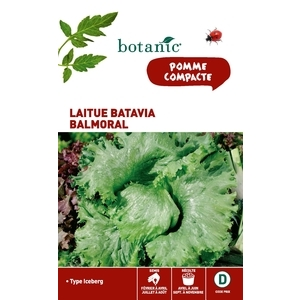 Laitue batavia balmoral (type iceberg) Caillard x2 sachets 261179