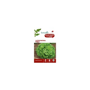 Laitue batavia funly Caillard x2 sachets 261181