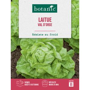 Laitue Val d'Orge 261199