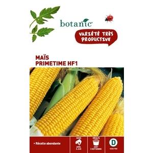 Maïs Primetime HF1 261208