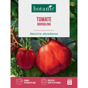 Tomate borsalina hf1 x2 sachets 261262
