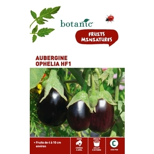 Aubergine ophelia hybride f1 Insolite x2 sachets 261272