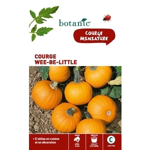 Courge wee-be-little Insolite x2 sachets 261277
