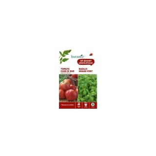 Tomate cuor di bue (cœur de bœuf) + basilic grand vert Duo compagne 261309