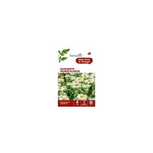 Grande Marguerite blanche x 2 sachets 261331