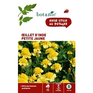 Œillet d'Inde petit jaune x 2 sachets 261333