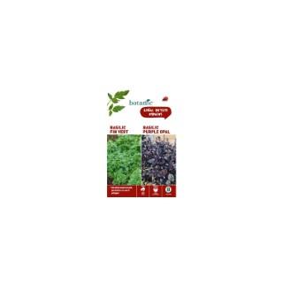 Basilic fin vert  +  basilic purple opal Duo aromatique 261342