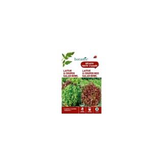 Laitue à couper salad bowl  +  laitue à couper red salad bow Duo potagere 261355
