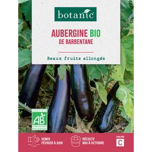 Aubergine de Barbentane AB BIO 261362