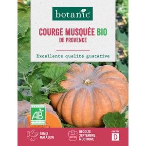 Courge Musquée de Provence AB BIO 261384