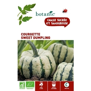 Courgette Sweet Dumpling AB BIO 261385