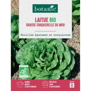 Laitue Grasse Craquerelle du Midi AB BIO 261400