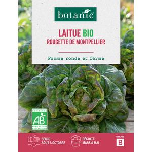 Laitue Rougette de Montpellier AB BIO 261406