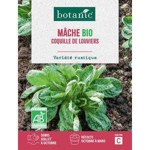 Mâche Coquille de Louviers AB BIO 261408