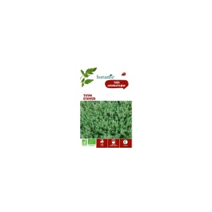 Thym d'hiver bio BIO 261432