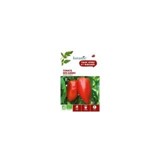 Tomate des Andes - Andine Cornue AB BIO 261437