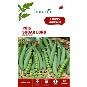 Pois nain sugar lord 80 Graines 261483