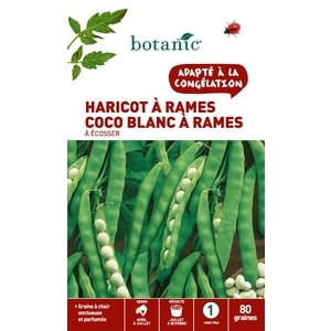 Haricot a rames a ecosser coco blanc a rames 80 Graines 261504