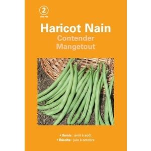 Haricot nain contender mangetout  200 gr 261507