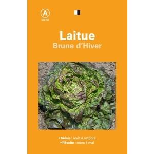 Laitue brune hiver 261527