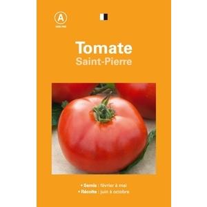 Tomate saint pierre 261542