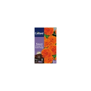 Souci à grande fleur double orange en sachet 263200