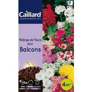 Mélange de fleurs pour balcons en sachet 263226