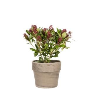 Pot Calima H 30,8 x Ø 25 cm 263523