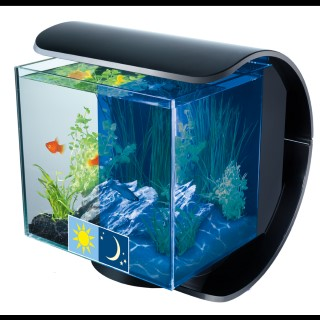 aquarium tetra silhouette noir 12 l clairage led aquariums autres marques animalerie botanic. Black Bedroom Furniture Sets. Home Design Ideas