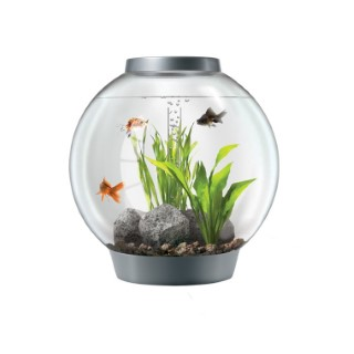 Aquarium BiOrb 60 L silver moonlight LED 277147
