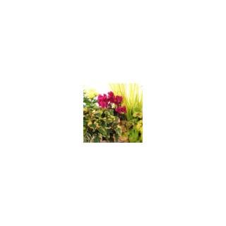 Jardinière d'automne. La jardinière de 25 cm 283263