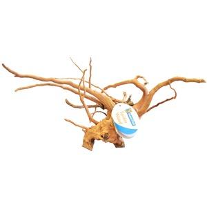 Racine-araignée de taille médium 30 à 40 cm 291961