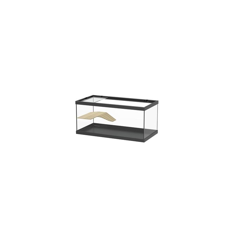 table basse aquarium botanic